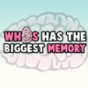 Who has the Biggest Memory?